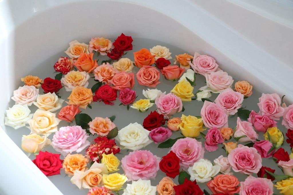 フラワーサイクルマルシェで販売していたバラ風呂用のバラ