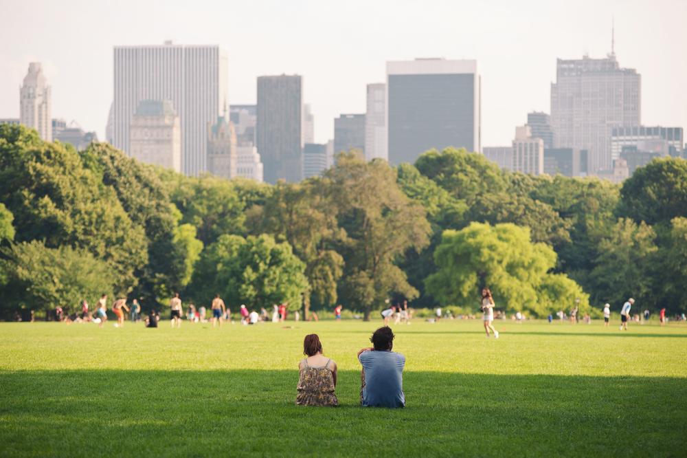 「木の不平等」を是正する指標「Tree Equity Score」