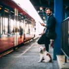 チケットが売れるたび植林する、イギリスの列車予約サイト「Trainhugger」