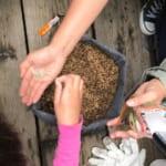 Community Compost