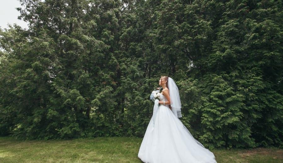 樹木と結婚する女性
