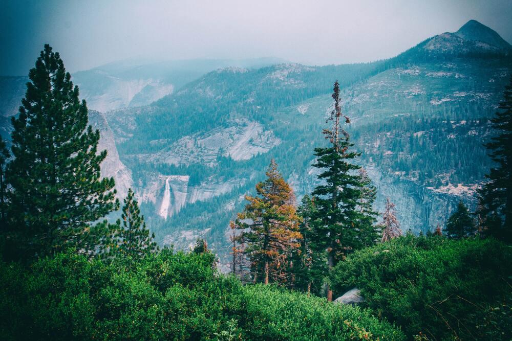 日本もパートナー締結。アパレル雑貨の売り上げで国立公園を保全する「Parks Project」